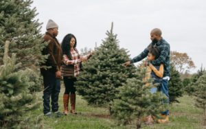 8 Family-Friendly Holiday Activities in the Bay!